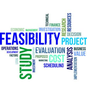 Suss the Feasibility